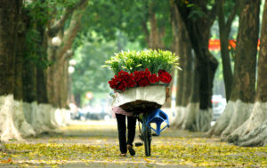 Hanoi Vietnam auntumn