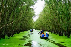 Mekong Delta Vietnam September