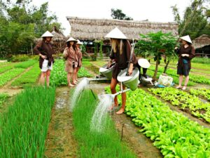 tra que vegetable village hoi an top experience vietnam travel guide